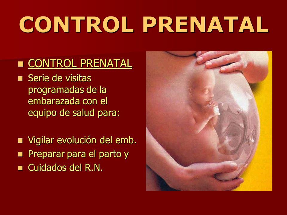 CONTROL PRENATAL CONTROL PRENATAL