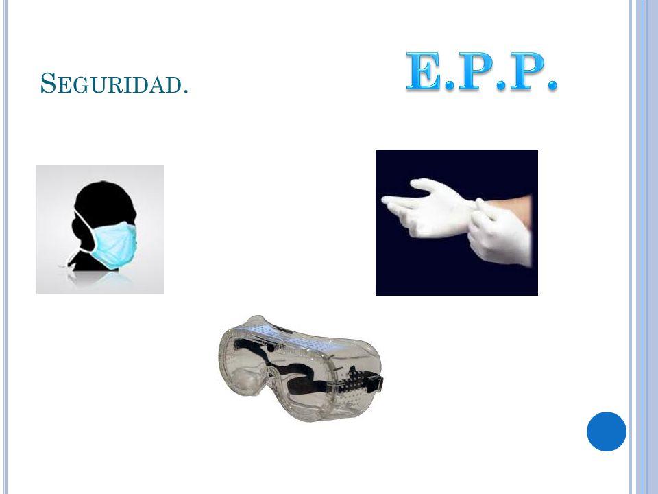 Seguridad. E.P.P.