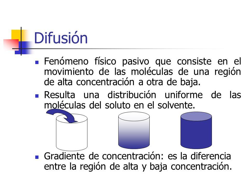 Difusión Fenómeno físico pasivo que consiste en el movimiento de las moléculas de una región de alta concentración a otra de baja.