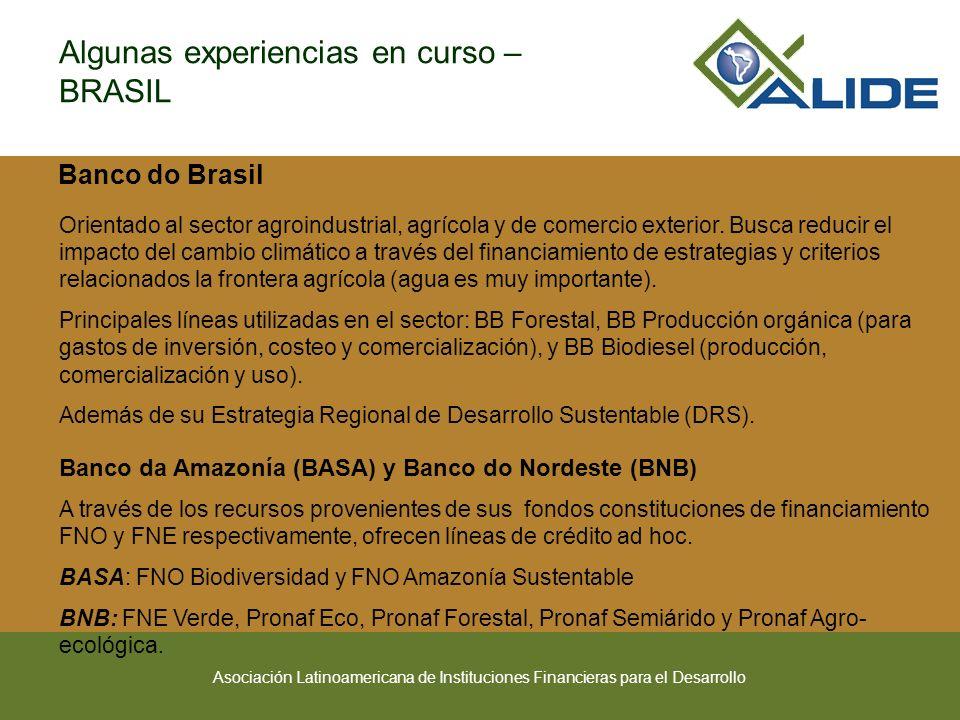 Algunas experiencias en curso – BRASIL