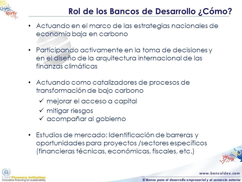 Rol de los Bancos de Desarrollo ¿Cómo