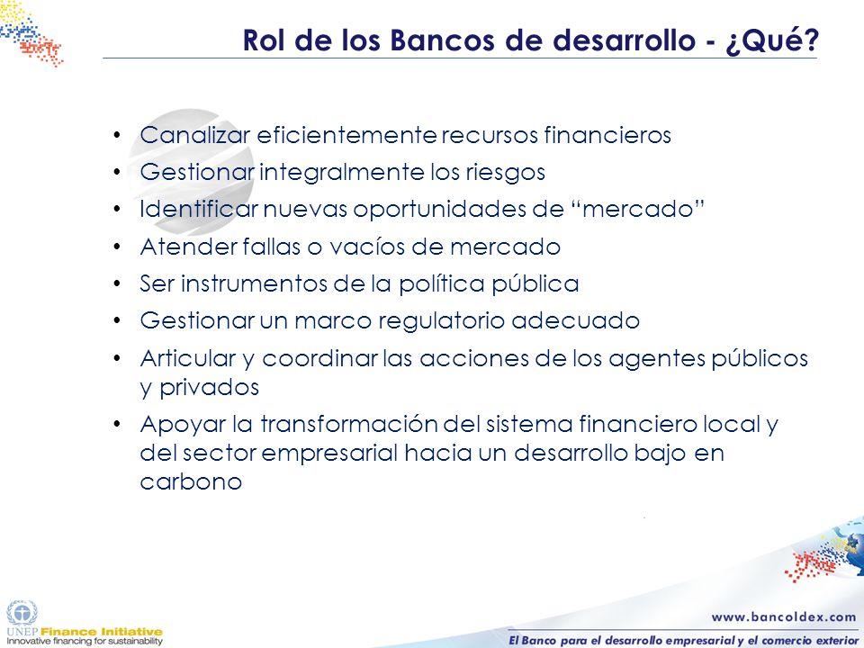 Rol de los Bancos de desarrollo - ¿Qué