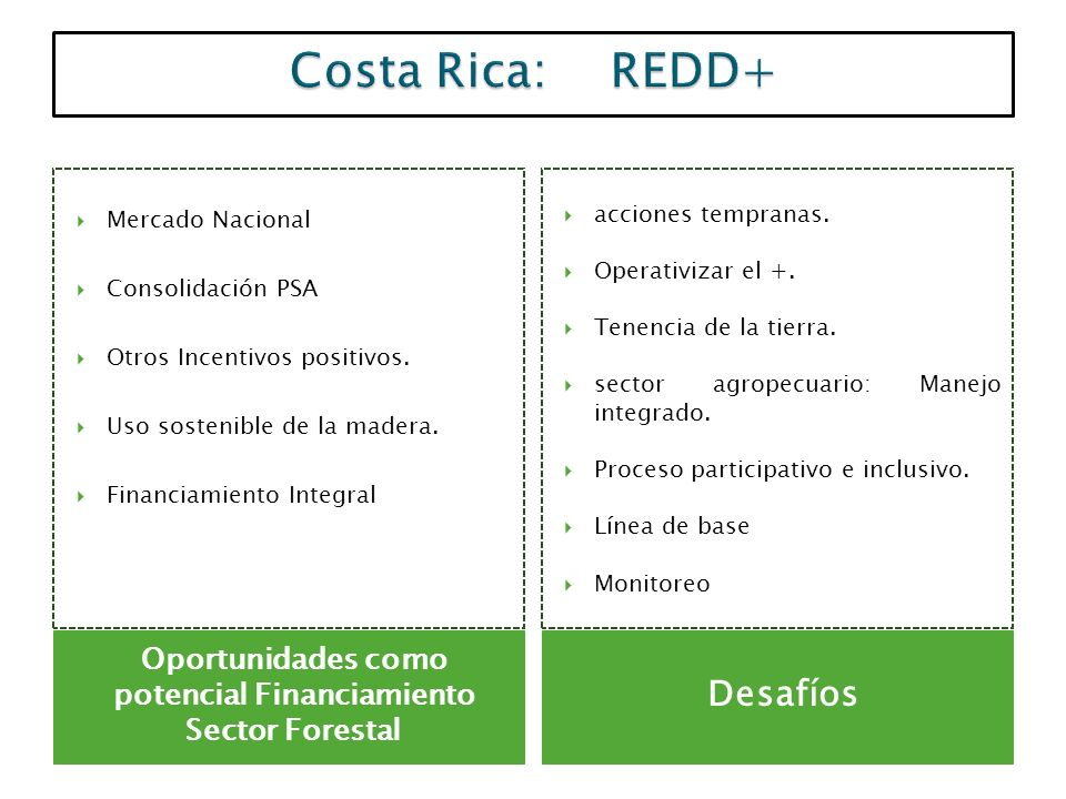 Oportunidades como potencial Financiamiento Sector Forestal