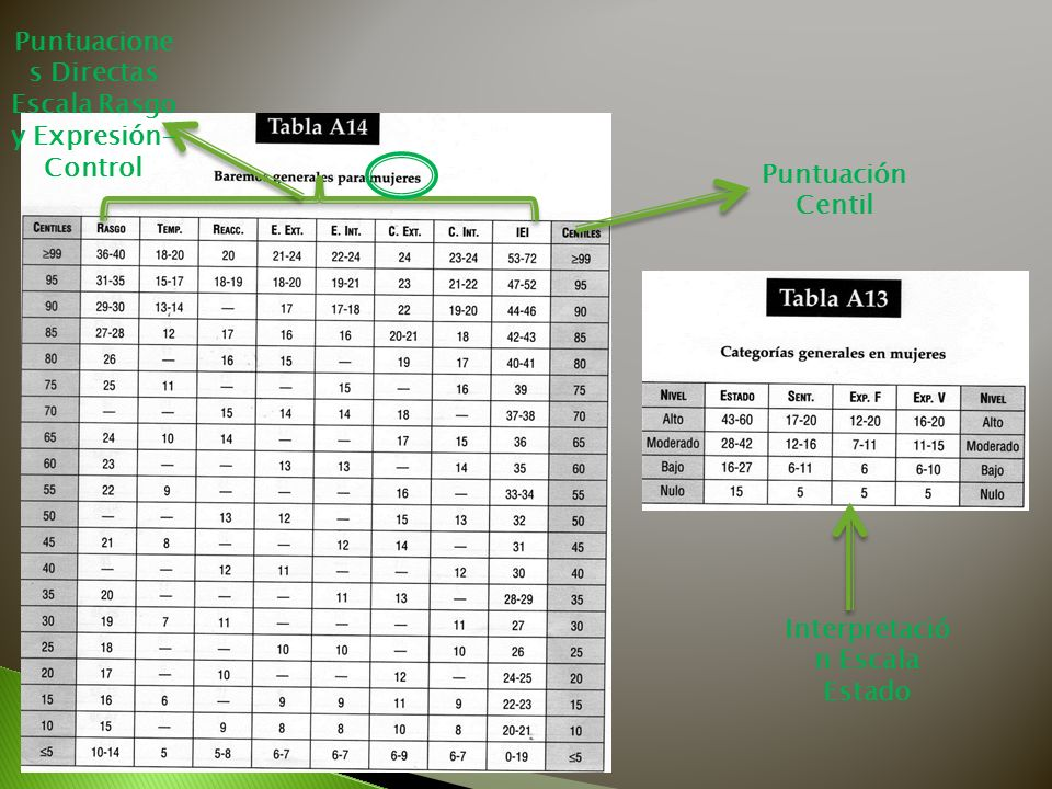 Puntuaciones Directas Escala Rasgo y Expresión-Control