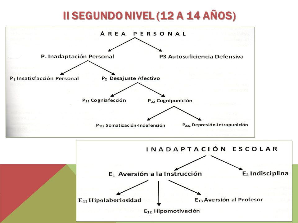 II Segundo Nivel (12 a 14 años)