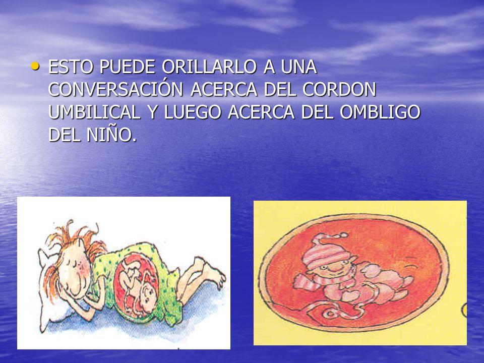 ESTO PUEDE ORILLARLO A UNA CONVERSACIÓN ACERCA DEL CORDON UMBILICAL Y LUEGO ACERCA DEL OMBLIGO DEL NIÑO.