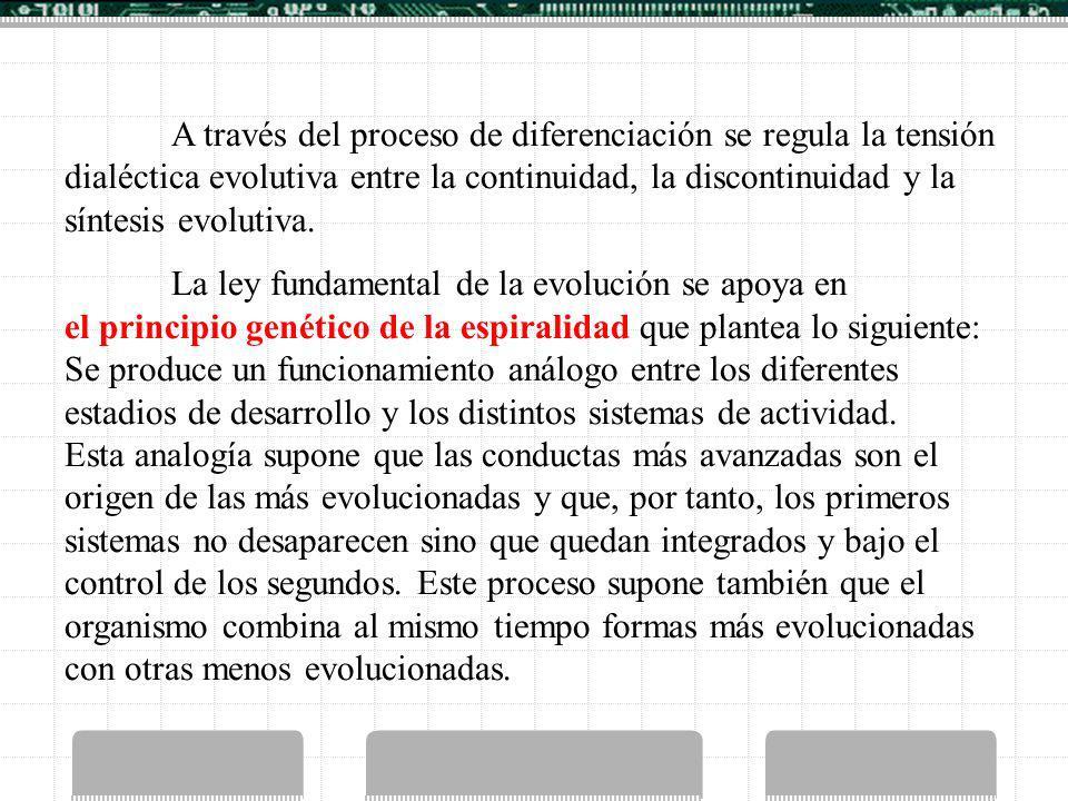 A través del proceso de diferenciación se regula la tensión dialéctica evolutiva entre la continuidad, la discontinuidad y la síntesis evolutiva.