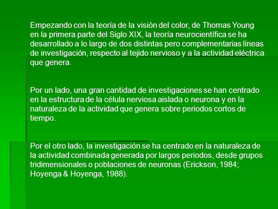 Empezando con la teoría de la visión del color, de Thomas Young en la primera parte del Siglo XIX, la teoría neurocientífica se ha desarrollado a lo largo de dos distintas pero complementarias líneas de investigación, respecto al tejido nervioso y a la actividad eléctrica que genera.