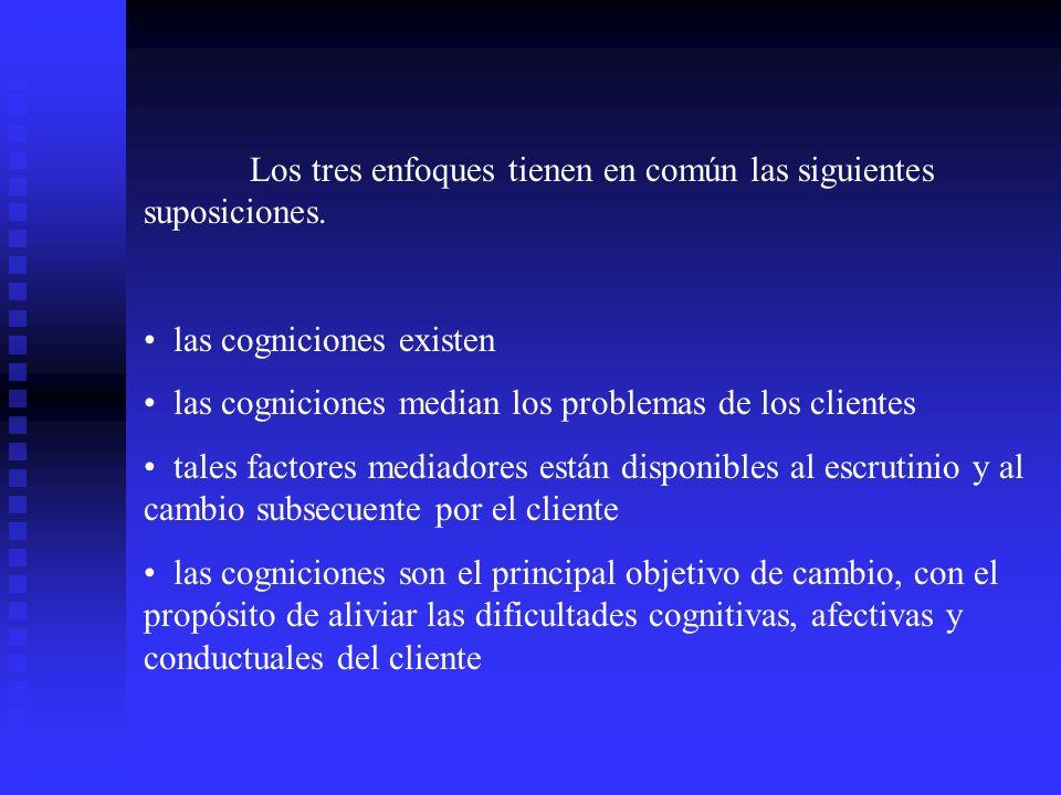 Los tres enfoques tienen en común las siguientes suposiciones.