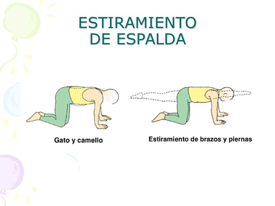 ESTIRAMIENTO DE ESPALDA
