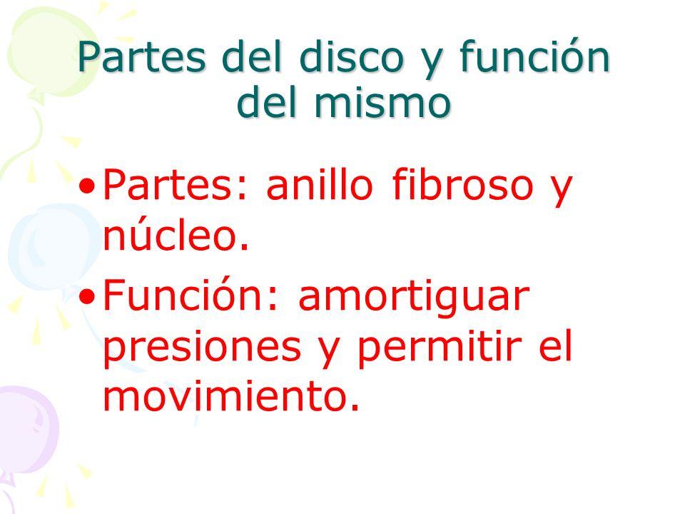 Partes del disco y función del mismo