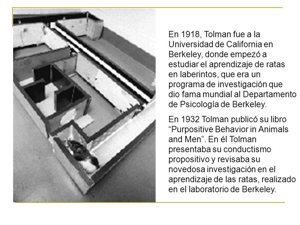 En 1918, Tolman fue a la Universidad de California en Berkeley, donde empezó a estudiar el aprendizaje de ratas en laberintos, que era un programa de investigación que dio fama mundial al Departamento de Psicología de Berkeley.
