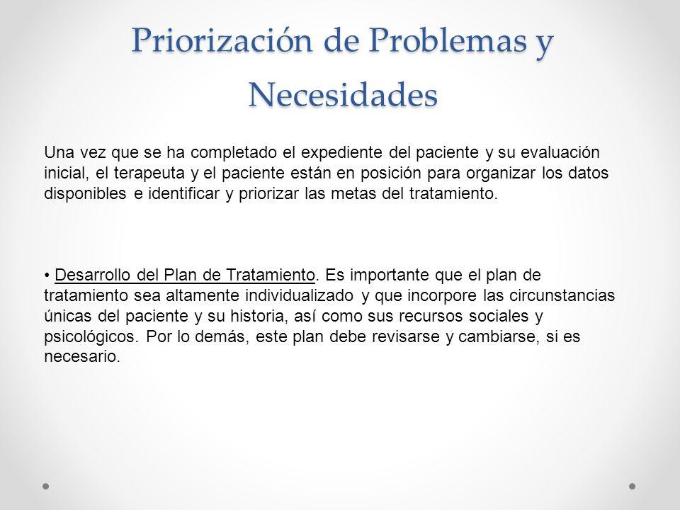 Priorización de Problemas y Necesidades