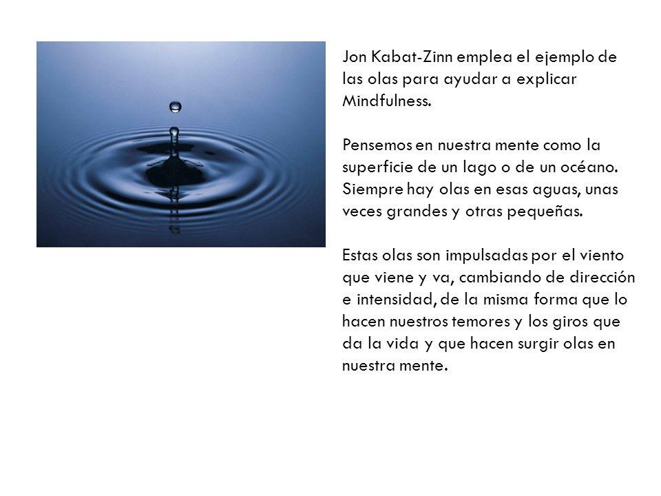 Jon Kabat-Zinn emplea el ejemplo de las olas para ayudar a explicar Mindfulness.