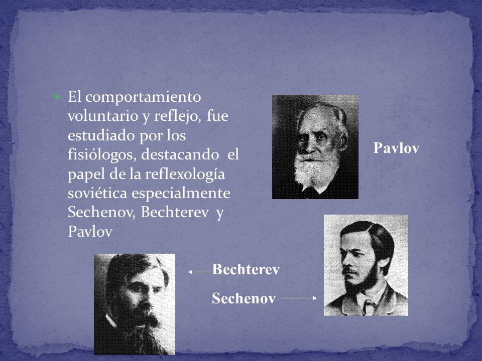 El comportamiento voluntario y reflejo, fue estudiado por los fisiólogos, destacando el papel de la reflexología soviética especialmente Sechenov, Bechterev y Pavlov