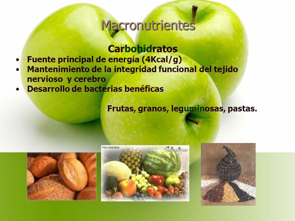 Macronutrientes Carbohidratos Fuente principal de energía (4Kcal/g)