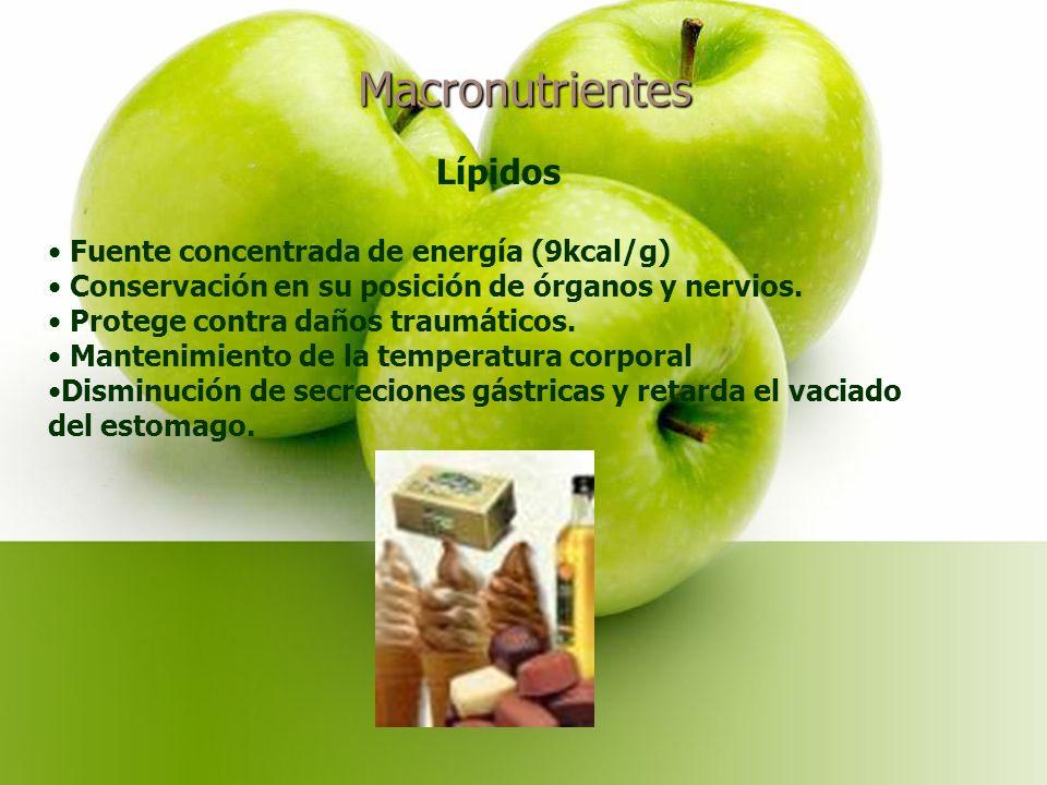 Macronutrientes Lípidos Fuente concentrada de energía (9kcal/g)
