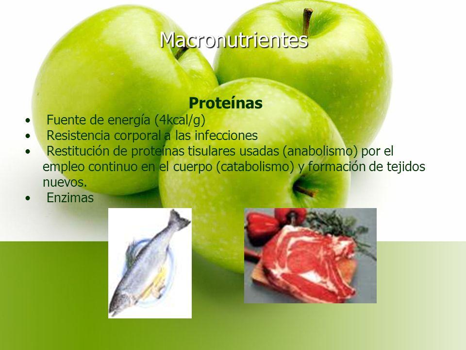 Macronutrientes Proteínas Fuente de energía (4kcal/g)
