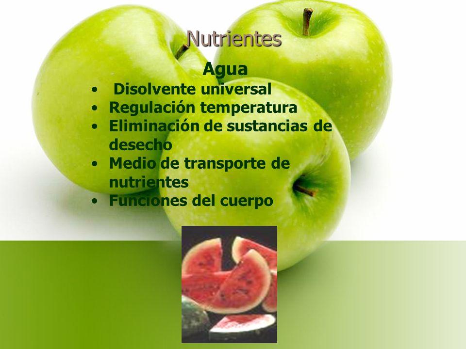 Nutrientes Agua Disolvente universal Regulación temperatura