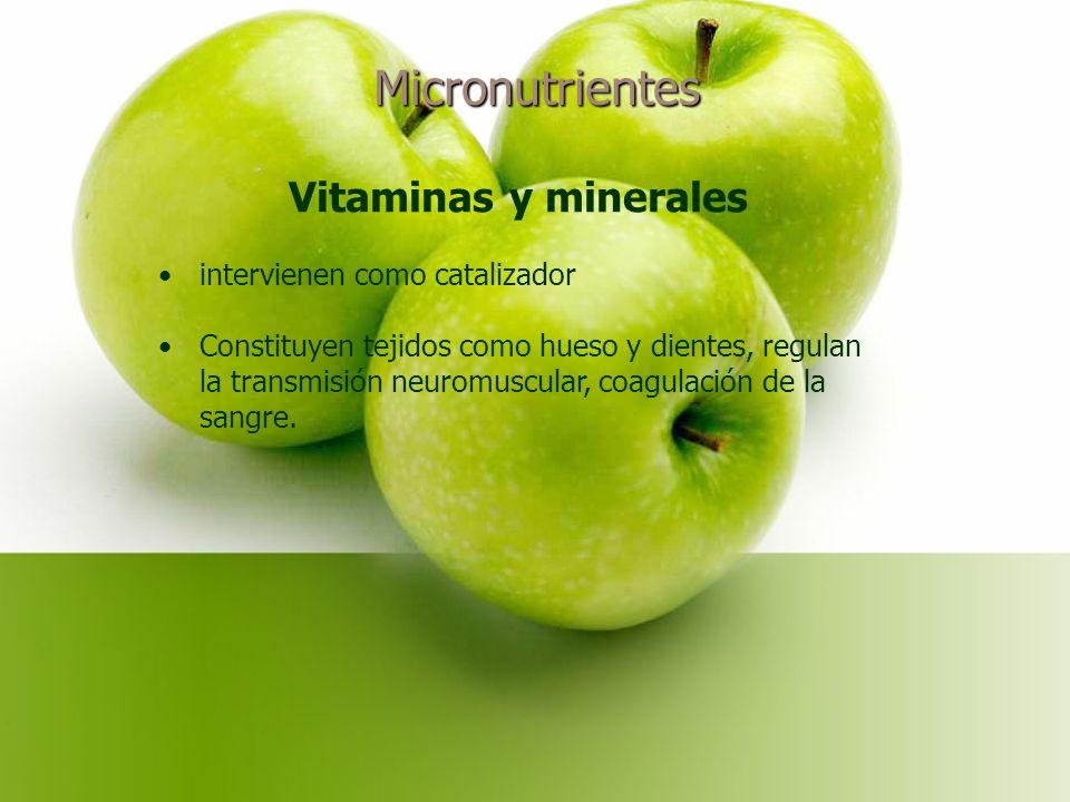 Micronutrientes Vitaminas y minerales intervienen como catalizador