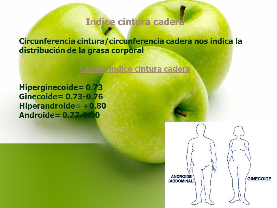 calculo indice cintura cadera