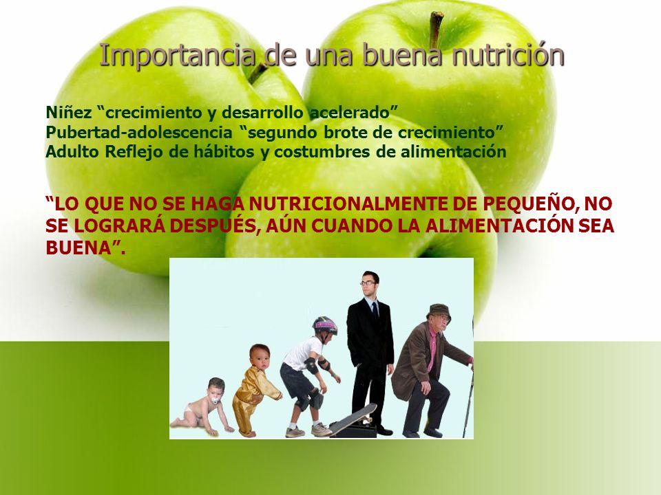 Importancia de una buena nutrición