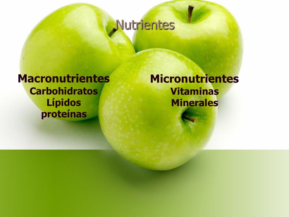 Nutrientes Macronutrientes Micronutrientes Carbohidratos Lípidos