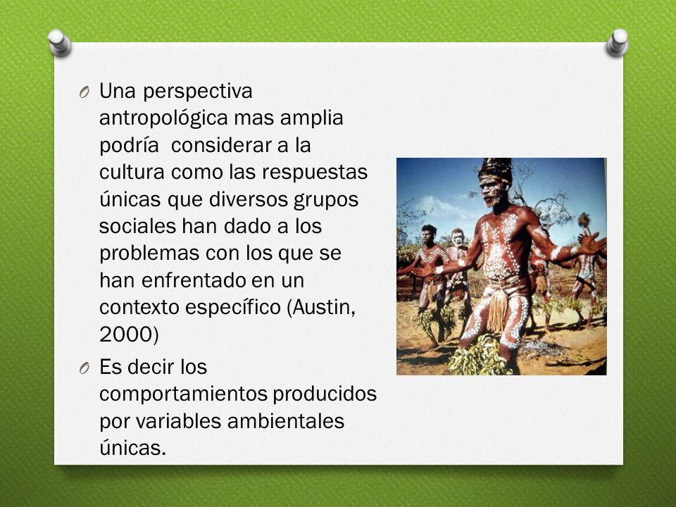 Una perspectiva antropológica mas amplia podría considerar a la cultura como las respuestas únicas que diversos grupos sociales han dado a los problemas con los que se han enfrentado en un contexto específico (Austin, 2000)