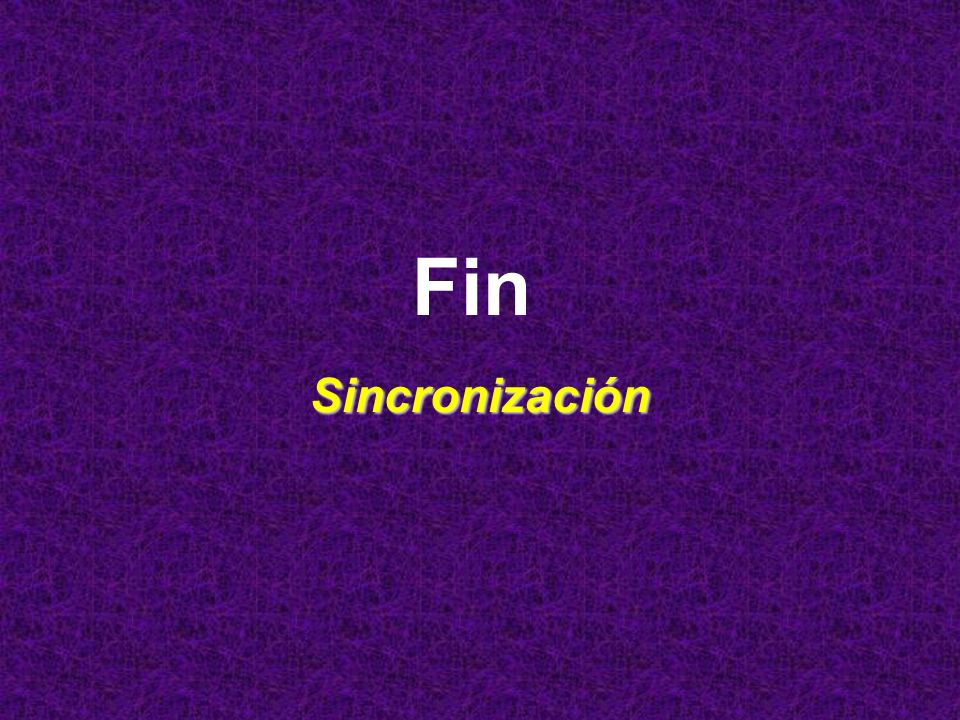 Fin Sincronización