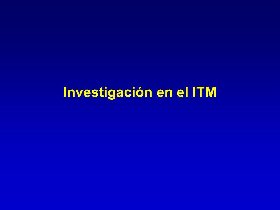 Investigación en el ITM