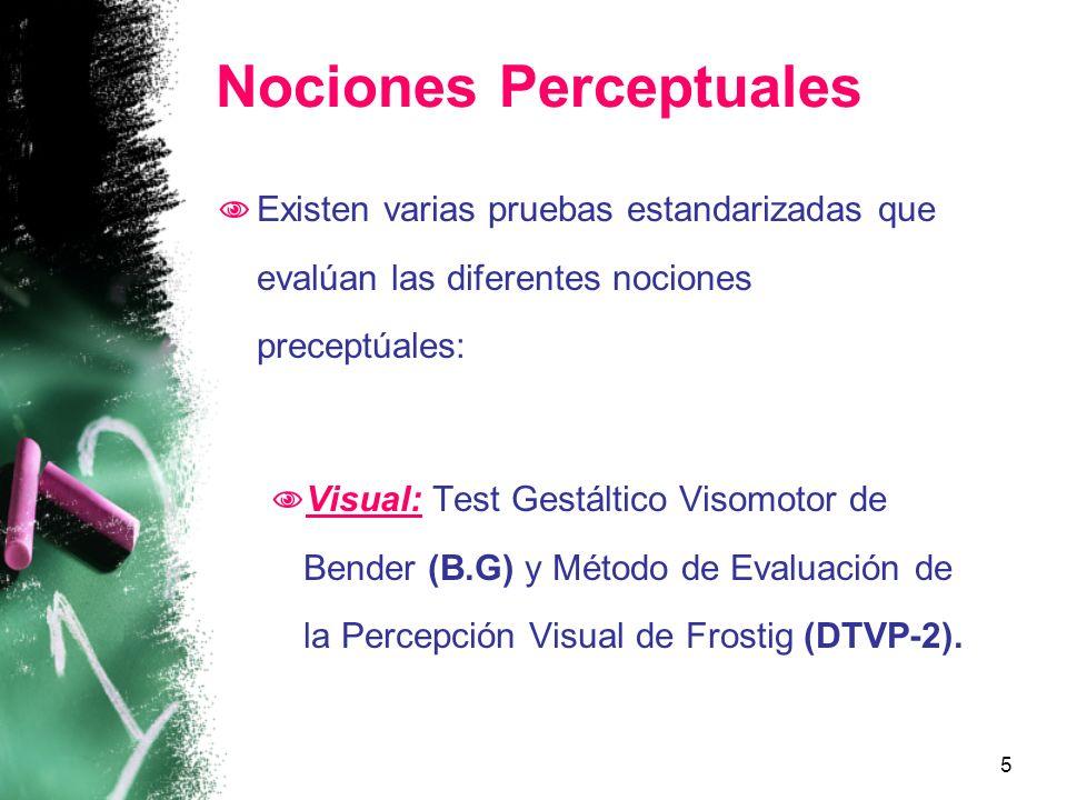 Nociones Perceptuales