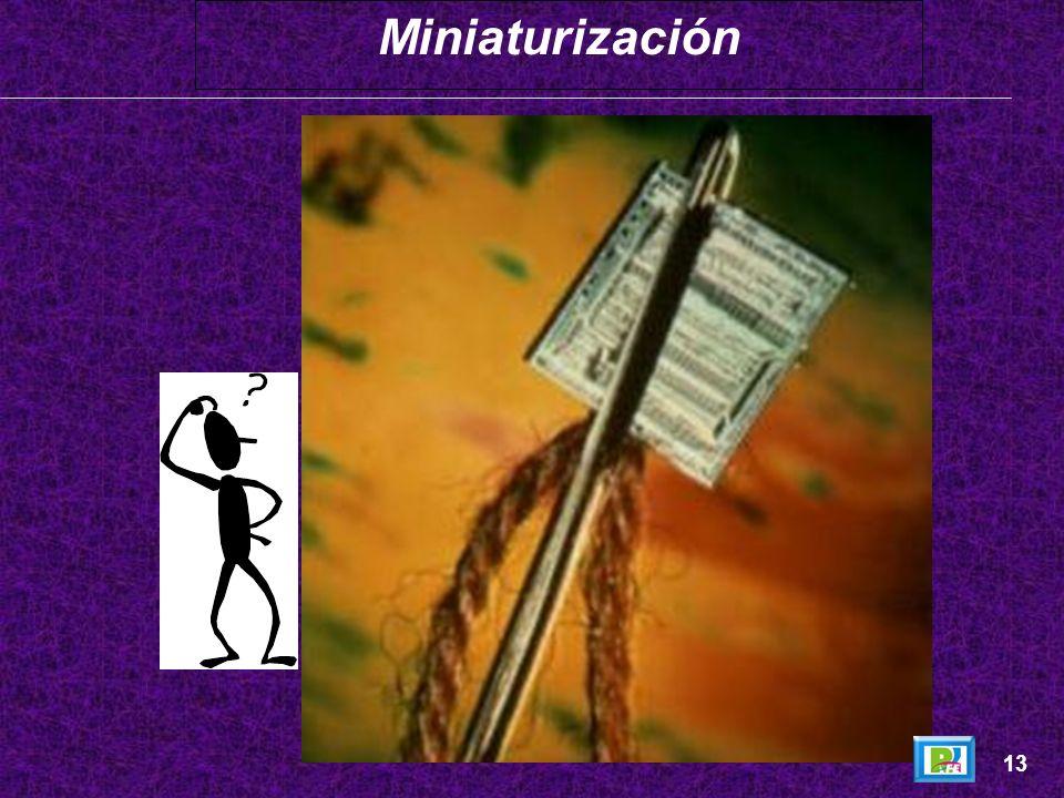 Miniaturización 13