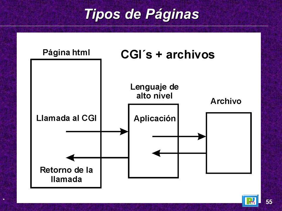 Tipos de Páginas _ 55