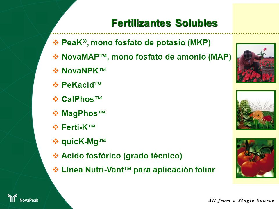 Fertilizantes Solubles