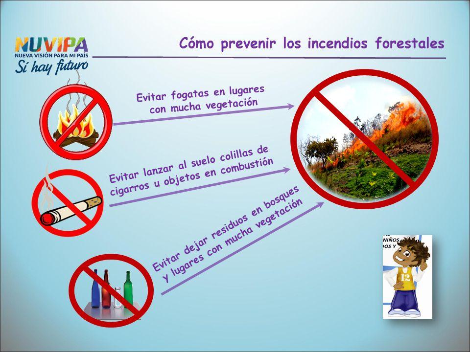 Causas de los incendios en la naturaleza y sus efectos en for Importancia de los viveros forestales