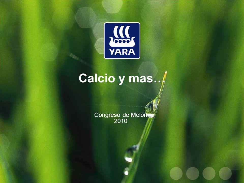 Calcio y mas… Congreso de Melón 2010