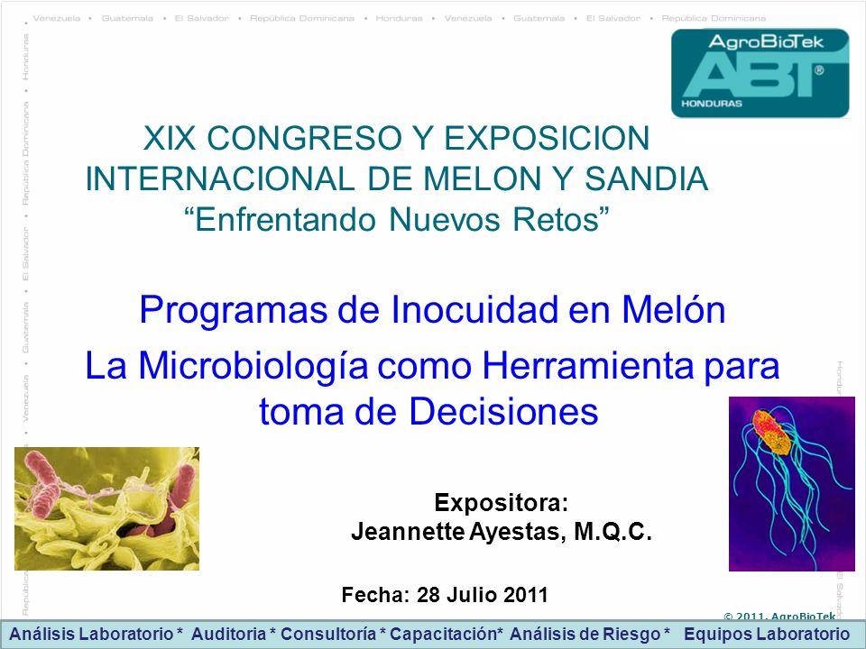 Programas de Inocuidad en Melón