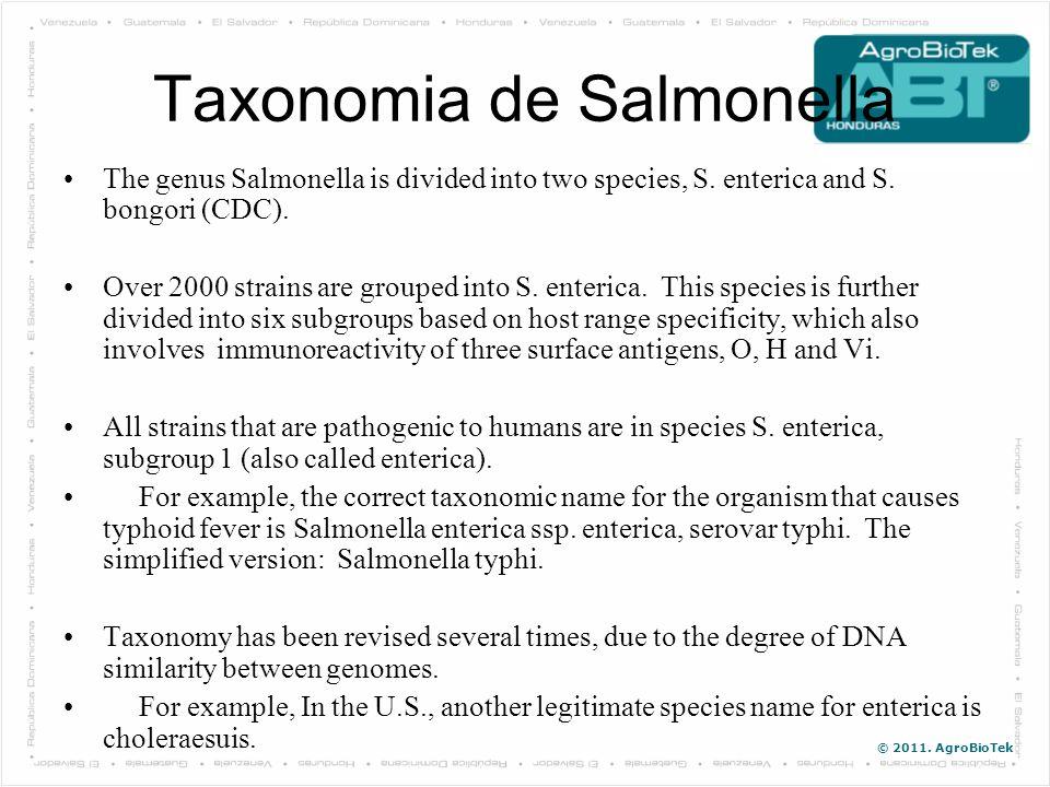 Taxonomia de Salmonella