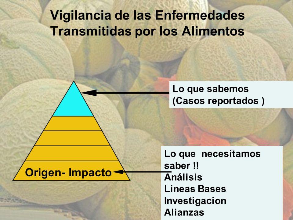Vigilancia de las Enfermedades Transmitidas por los Alimentos