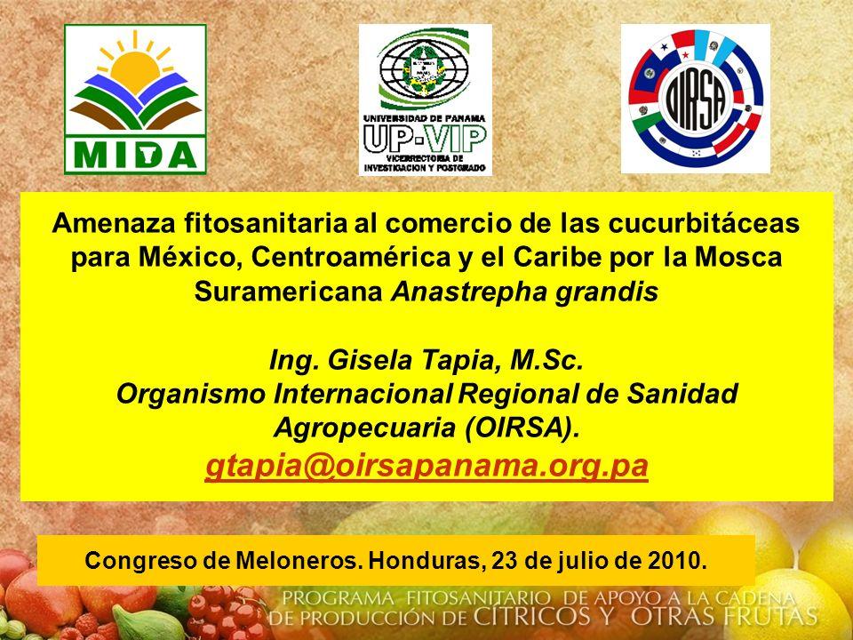 Congreso de Meloneros. Honduras, 23 de julio de 2010.