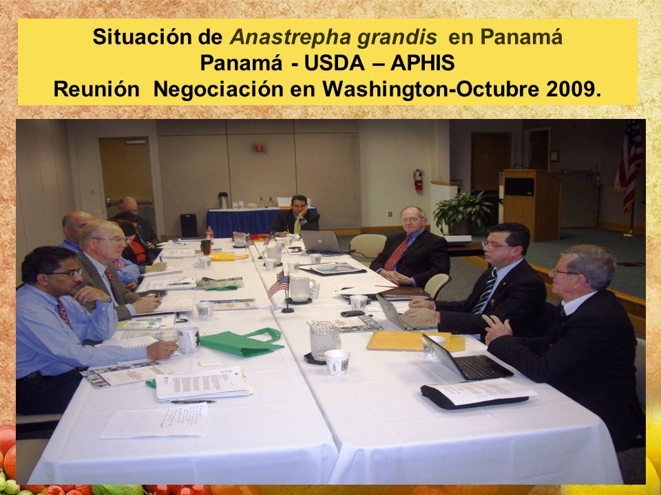 Situación de Anastrepha grandis en Panamá Panamá - USDA – APHIS Reunión Negociación en Washington-Octubre 2009.