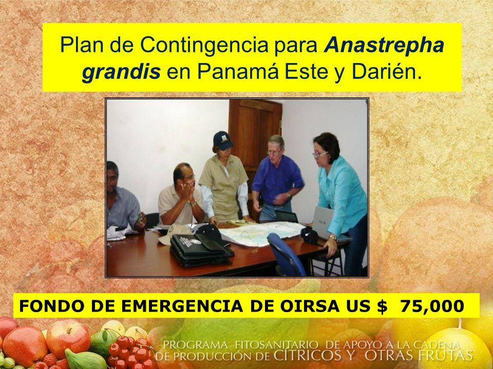 Plan de Contingencia para Anastrepha grandis en Panamá Este y Darién.