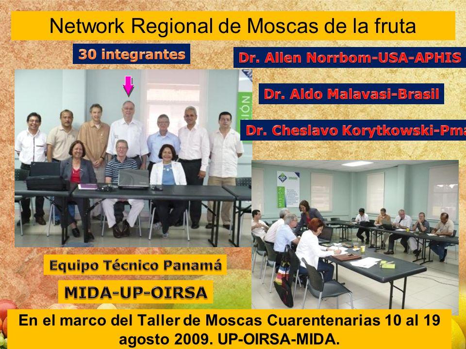 Network Regional de Moscas de la fruta