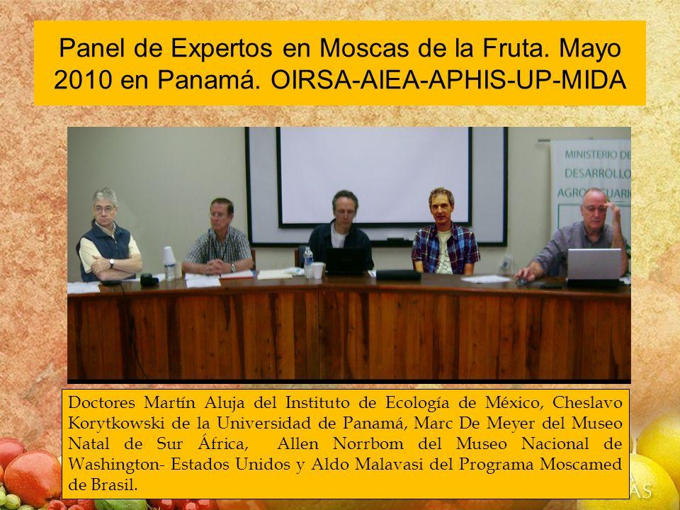Panel de Expertos en Moscas de la Fruta. Mayo 2010 en Panamá
