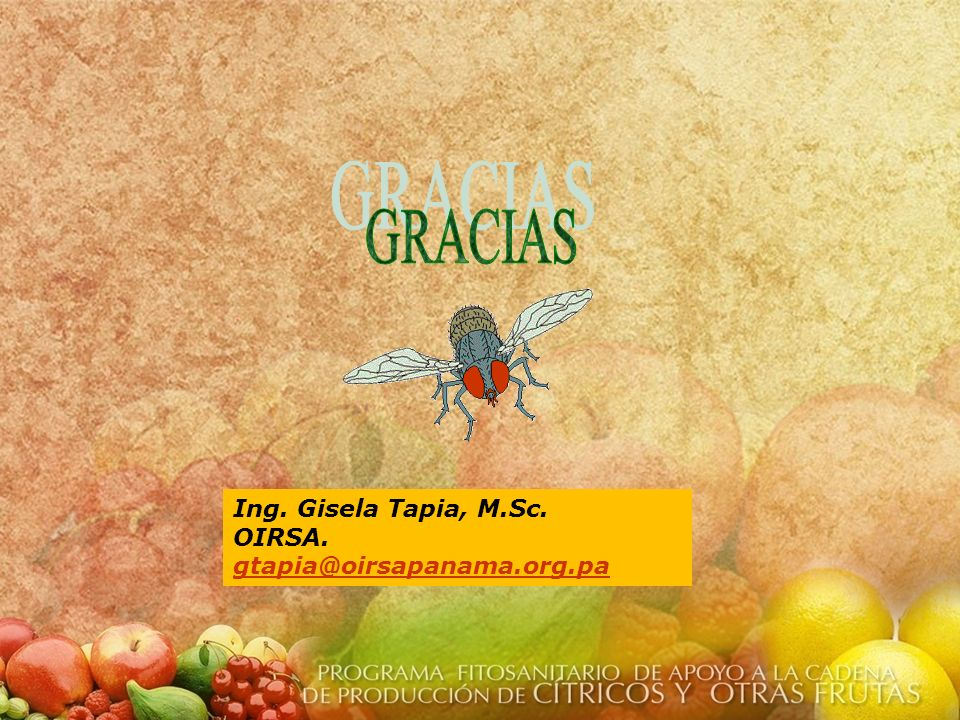 GRACIAS Ing. Gisela Tapia, M.Sc. OIRSA. gtapia@oirsapanama.org.pa