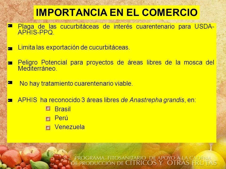 IMPORTANCIA EN EL COMERCIO