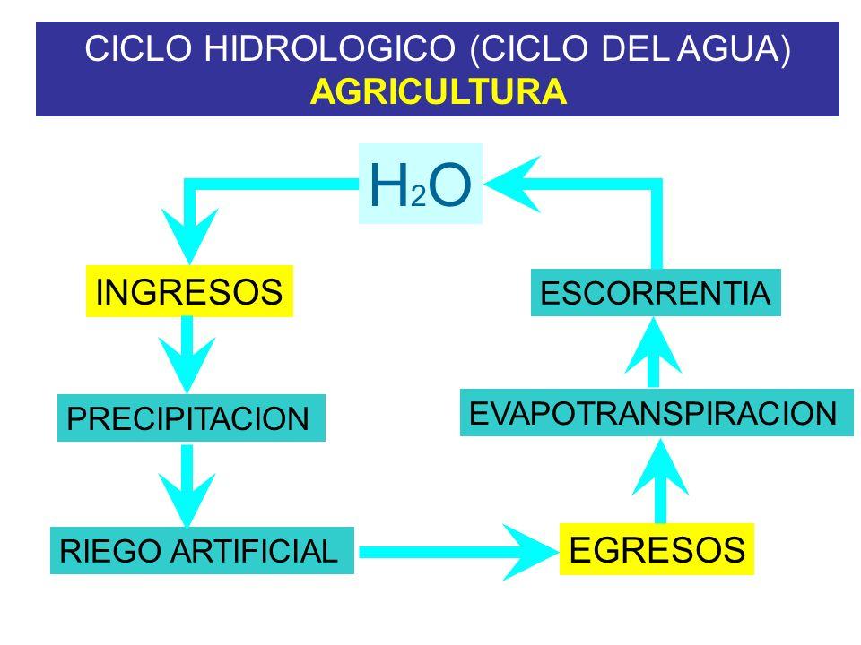 CICLO HIDROLOGICO (CICLO DEL AGUA) AGRICULTURA