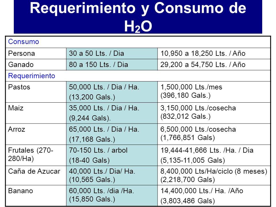 Requerimiento y Consumo de H2O