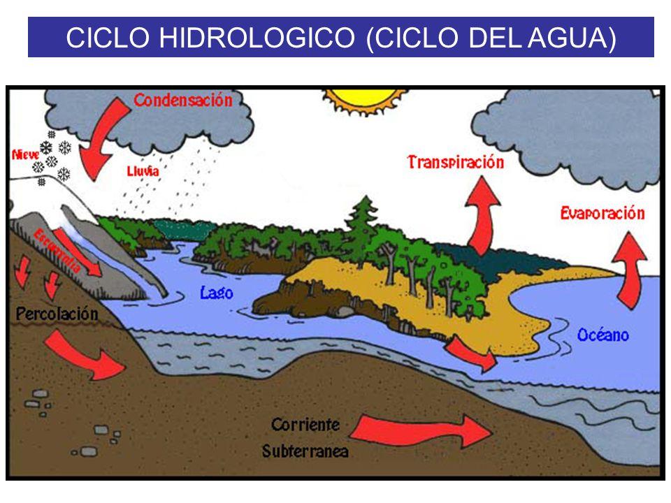 CICLO HIDROLOGICO (CICLO DEL AGUA)