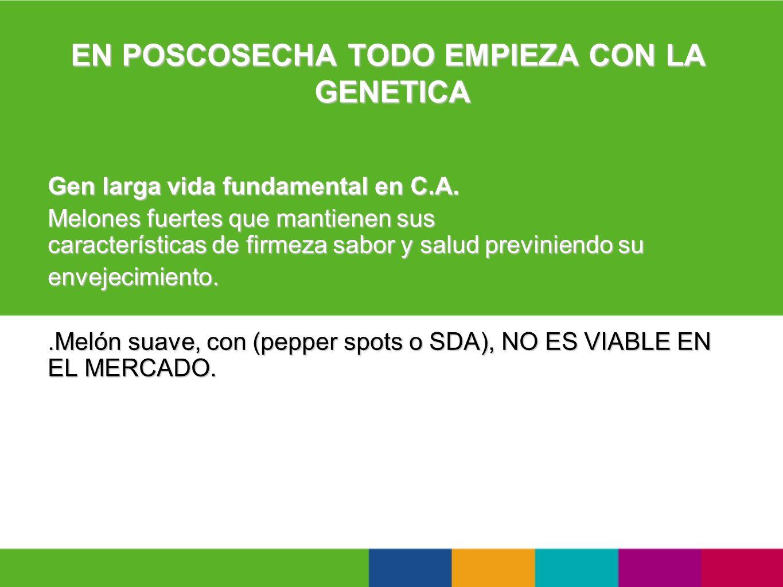 EN POSCOSECHA TODO EMPIEZA CON LA GENETICA